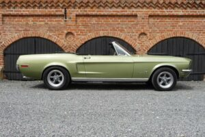 Mustang Conv.